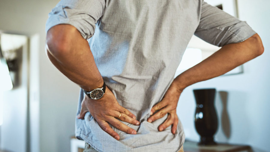 To prevent back pain you should equip your office with ergonomic furniture and alternate between sitting and standing.